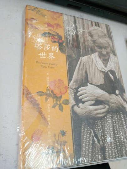 塔莎的花园(佛蒙特的梦幻花园)(精) 晒单图