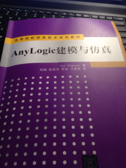 AnyLogic建模与仿真/高等院校信息技术规划教材 晒单图