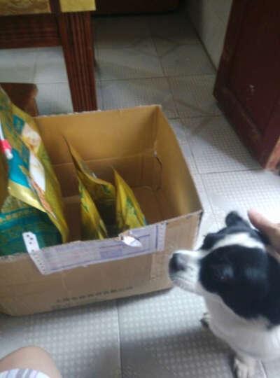 冠邦 宠物主粮幼犬狗粮5kg公斤1.5kg公斤10kg公斤 冠邦幼犬10kg 晒单图