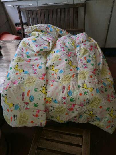 自然大师 抱枕靠垫被子两用腰靠抱枕被沙发靠背午睡枕空调被 狗狗联盟 大号绗缝版(150-200cm) 晒单图