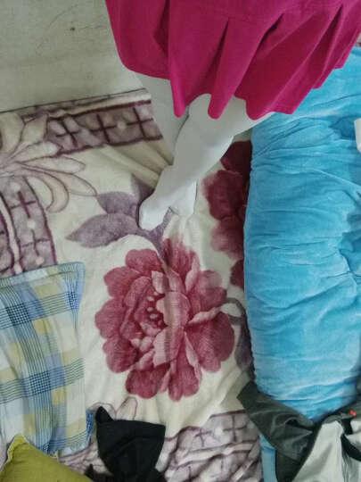 捷昇(JIESHENG) 女童芭蕾舞袜舞蹈袜儿童连裤袜打底裤袜练功袜天鹅绒丝袜 白色XL码 晒单图