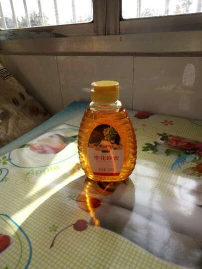 蜜浪蜂坊(MI LANG FENG FANG) 蜜浪蜂坊蜂蜜500g 出口品质 枣花蜂蜜 晒单图