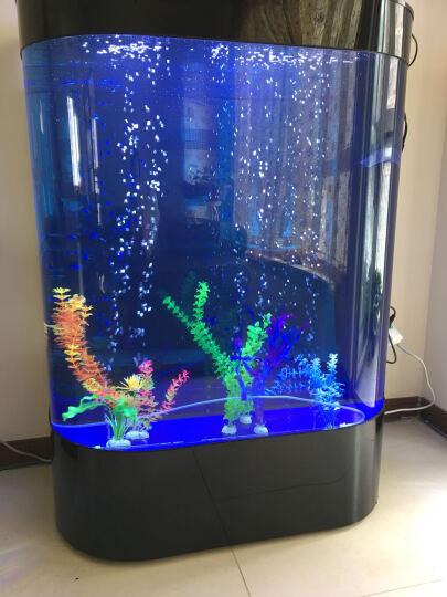 美之海双圆形鱼缸玻璃金鱼缸水族箱80生态鱼缸60大型