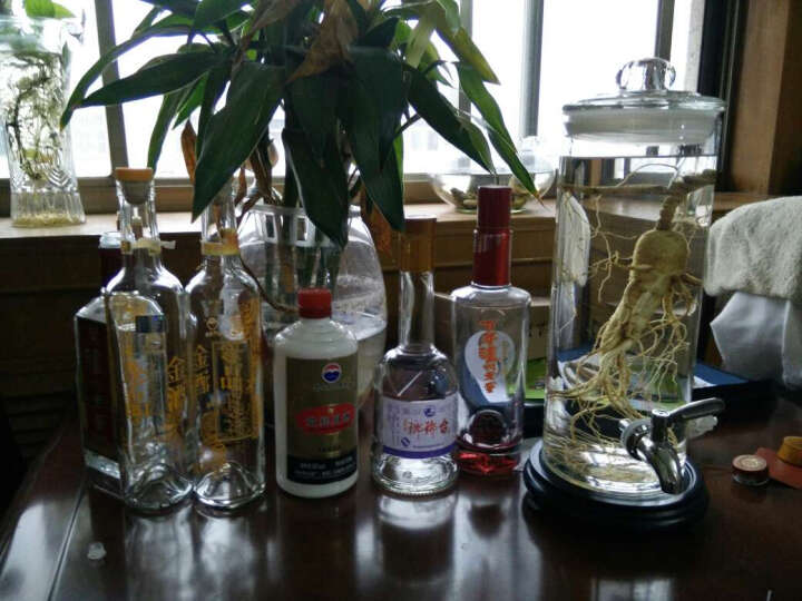 百货旺(baihuowang) 鹿鞭人参泡酒瓶 直筒细高玻璃酒缸 透明泡酒罐 药酒陈列瓶 12斤瓶+龙头+底座 晒单图