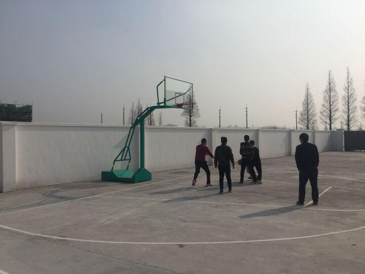 斯诺德移动篮球架成人户外室外室内标准比赛篮球架板 送网兜 二只一对 其它地区物流自提自行安装 晒单图
