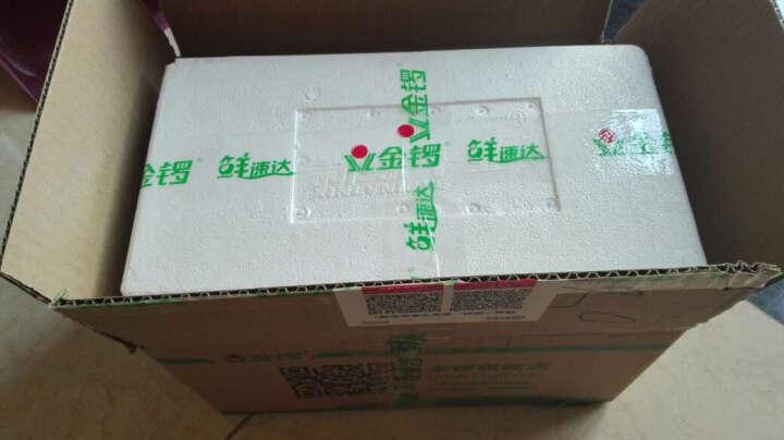 金锣培根肉片300g*3袋(单袋约12片) 烧烤火锅烤肉食材 晒单图