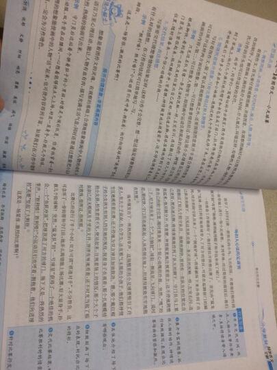 金星 小学教材全解:五年级英语下(人教版·精通 三年级起点 2017春) 晒单图