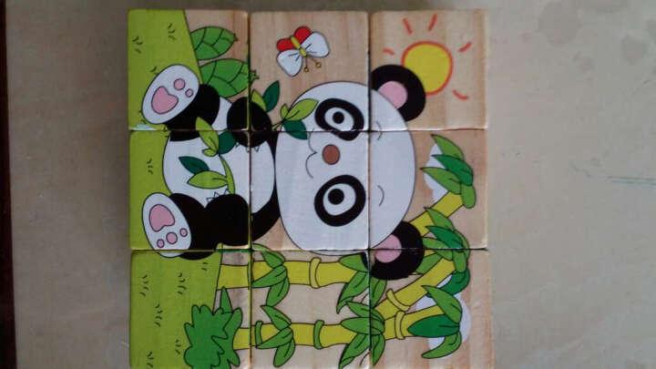 3d立体卡通动物拼图 6面画9粒拼板