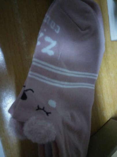 蝶风缘 袜子女生短袜可爱耳朵夏季韩版浅口船袜 隐形猫咪5色5双 晒单图