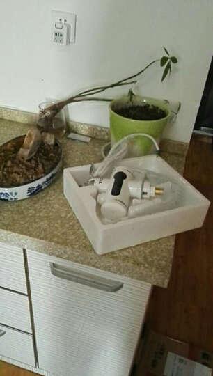 TCL 速热电热水龙头 厨房快速加热 即热式电热水器 小厨宝 TDR-30AX 下进水 晒单图