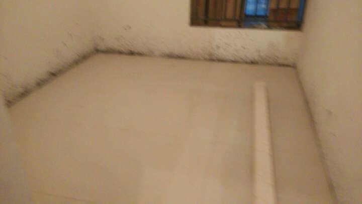 可波罗瓷砖地砖800客厅卧室地板砖背景墙瓷砖抛光砖经典普拉提纹理玻化砖吉祥石PG8022C PG8022C 800*800 晒单图