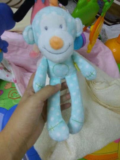 [晒单帖]小猴子很可爱!宝宝很喜欢!
