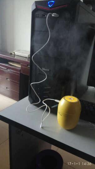 柠檬迷你usb空气加湿器创意宿舍办公室卧室家用静音桌面礼物礼品 蓝色 晒单图