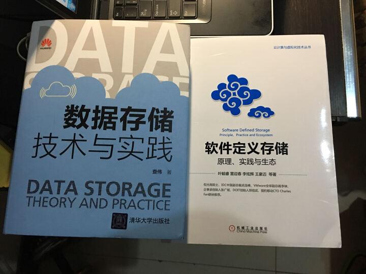 数据存储技术与实践+软件定义存储 原理 实践与生态 云计算与虚拟化技术丛书 晒单图