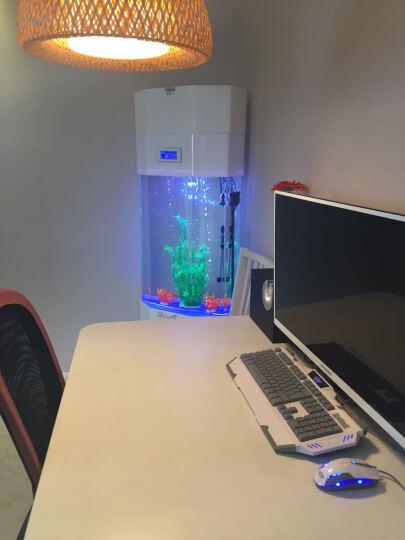 嘉洋客厅鱼缸水族箱白色欧式中小型亚克力鱼缸 生态水族箱 免换水 酒红色 晒单图