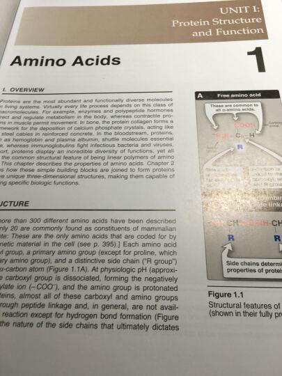 生物化学(第6版) 晒单图