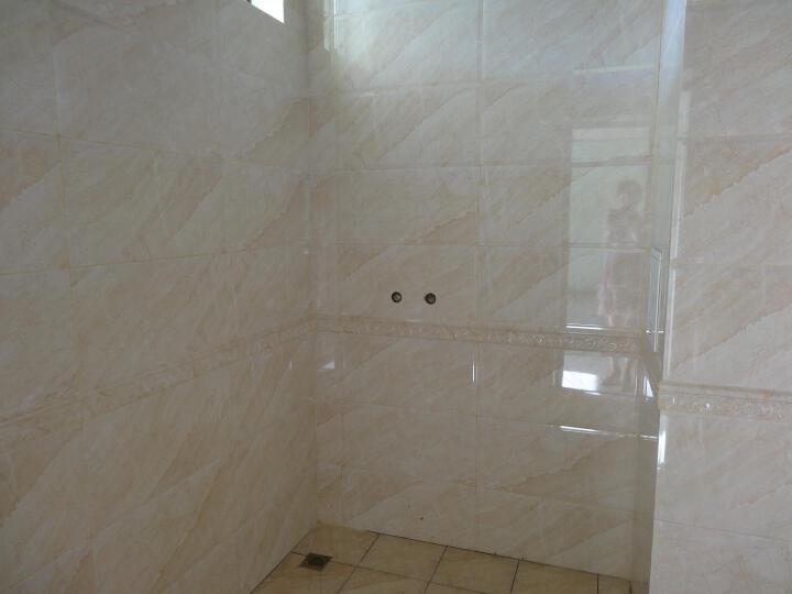 【青橙瓷砖】卫生间瓷砖300x600墙砖 厨卫砖 厨房瓷片 浴室洗手间墙面砖 防滑地砖 600*300mm花片 晒单图