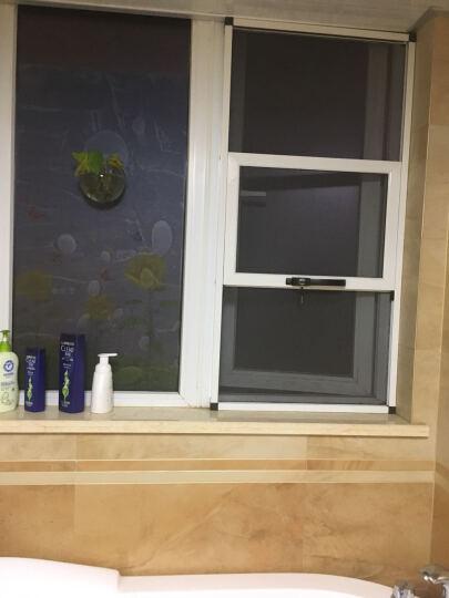 蓝瑞田园磨砂玻璃贴膜纸 卫生间浴室玻璃门推拉移门彩装膜阳台窗户贴纸窗花纸 向日葵 静电膜--58CM宽*90CM 晒单图