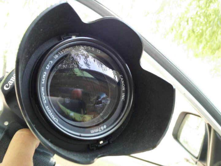 富姬雅玛CLOSE-UP+4近摄镜 微距镜 放大镜 增距镜 放大效果 成像效果佳 微拍利器 72mm 晒单图
