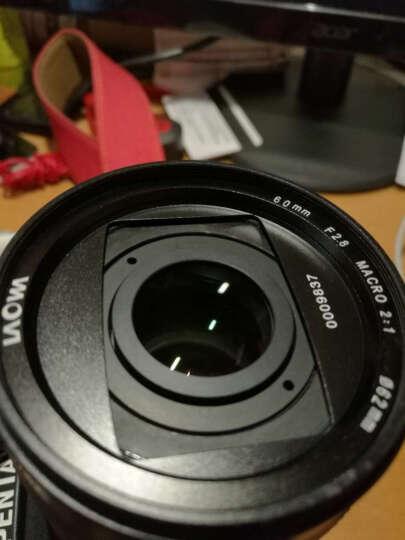 老蛙(LAOWA)LAOWA老蛙 60mm F2.8 2:1倍超微距镜头(索尼镜头E卡口) 晒单图