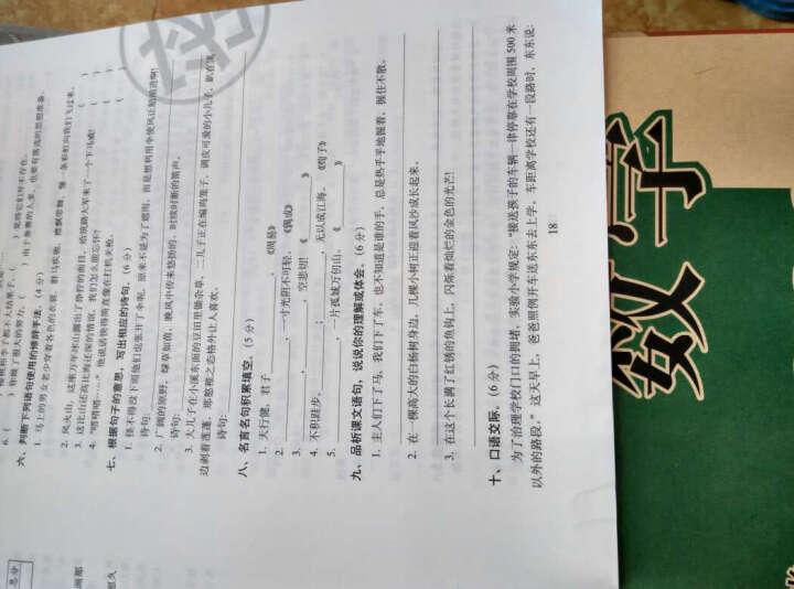 68所名校图书2017春 期末冲刺100分:语文+数学+英语+课内外阅读 五年级下(人教课标版 通用版 套装共4册) 晒单图