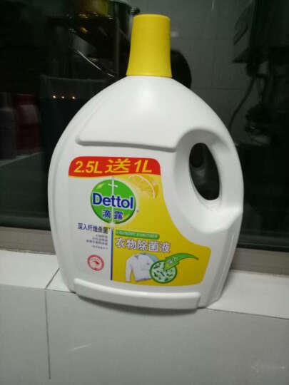 柯林龙安 84消毒液 清青草香型除菌液 800g 晒单图