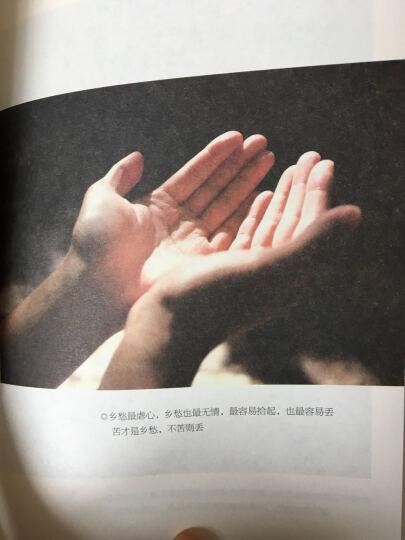 乖,摸摸头+愿有人陪你颠沛流离+再美也美不过想象(套装共3册) 晒单图
