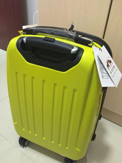 儿童行李箱蜘蛛侠拉杆箱包旅行箱子万向轮男女学生大黄蜂登机箱小孩密码箱拉链箱20 米奇 20寸 晒单图