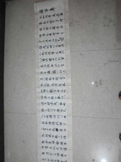 御宝阁 王羲之书法字帖兰亭序临摹毛笔字帖 行书入门中楷描红书半生熟长卷宣纸 仿古色套餐(字帖+墨汁+毛笔+墨碟+毛毡) 晒单图