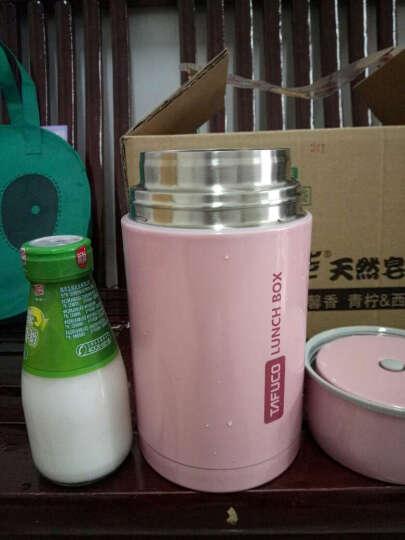 泰福高(TAFUCO)焖烧杯 304不锈钢焖烧罐焖烧壶保温粥桶 赠保温包 T-2002 粉色 1.0L 晒单图