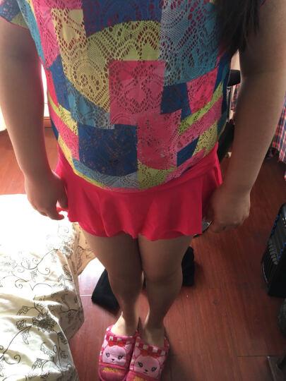 Wave海浪新款泳衣分体裙式游泳衣女三件套小胸聚拢钢托遮肚比基尼泡温泉泳装 红色 L 晒单图