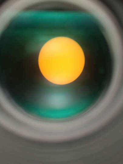 西湾(CIWA) 天文望远镜  仰望者80AZ  高倍高清  专业观星  儿童入门 套餐5 数码相机拍摄版 晒单图