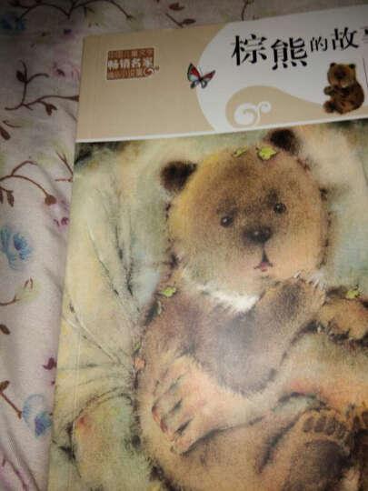 棕熊的故事 沈石溪 中国儿童文学畅销名家精品小说集 7-10-12岁儿童文学小说故事书读物 晒单图