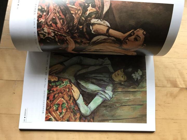 世界名画家全集:塞尚(现代绘画之父)  晒单图