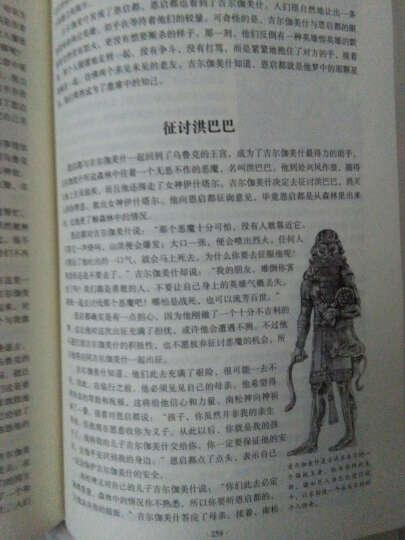 古罗马神话故事(硬壳精装)北欧 美素不达米亚 埃及 印度 中国神话故事与民间传说 世界名著 晒单图