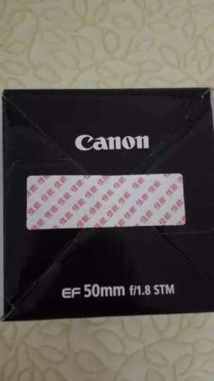 佳能(Canon) EOS 700D 单反套机 (EF 50mm f/1.8 STM 镜头) 晒单图