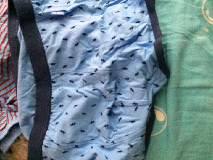 红豆儿童内裤纯棉底裆可爱卡通宝宝中大童青少年男童短裤平角裤3条礼盒装 DK009组合一 110 晒单图