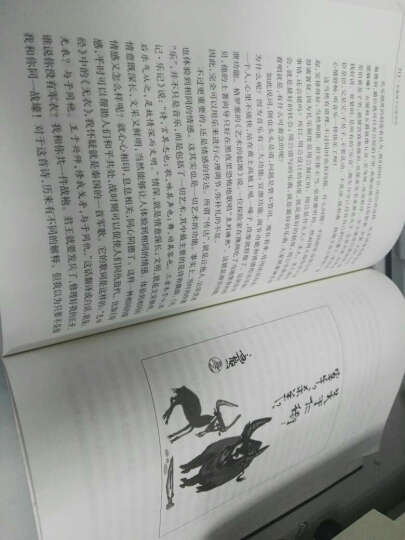 先秦诸子百家争鸣 易中天 文学 书籍 晒单图