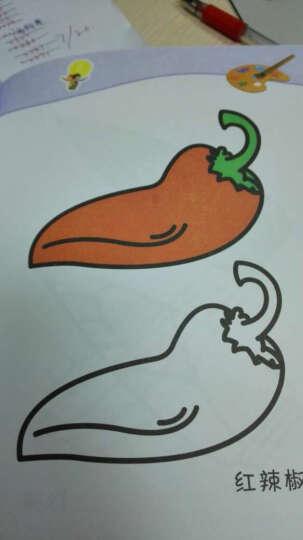 册 赠送12色蜡笔 动物风景人物交通蔬菜水果 儿童学画画 蜡笔凃色画画