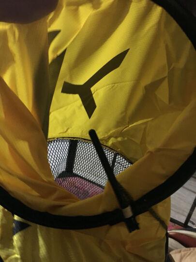 逸钓者 特价送渔护包涂胶不锈钢双圈鱼护竞技鱼护网鱼网兜速干防挂钩 320x40cm 晒单图