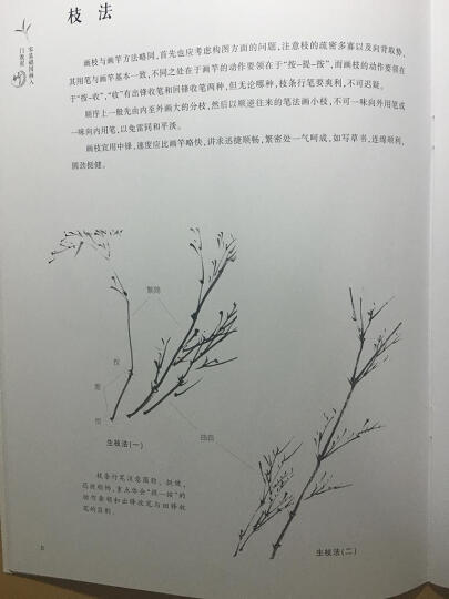 零基础国画入门教程:兰 晒单图