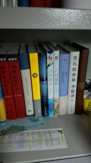 青鸟故事集 李敬泽著 正版现货  李敬泽用温情与敬意诠释历史,以智力和想象解密 晒单图