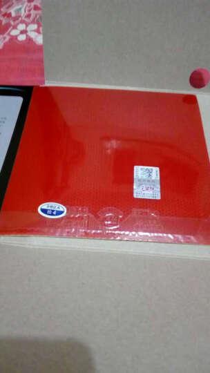天津友谊729 乒乓球拍底板套胶 反胶套胶729-5 快攻弧圈型 红色一片装 晒单图