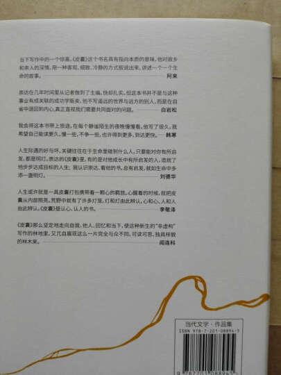 正版 套装2册 在这复杂世界里+皮囊(精) 当代散文 蔡崇达中国现当代小说书籍 韩寒著 晒单图