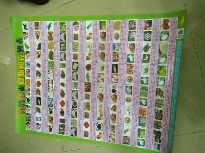 优化食物与食物营养结构相宜 常见食物肉禽蛋水产类食物相克共4张 晒单图