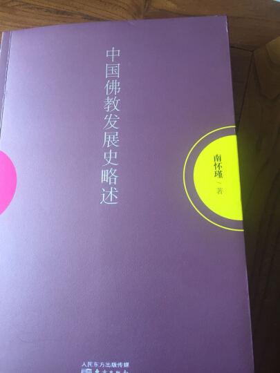 中国佛教发展史略述 南怀瑾 宗教与术数 书籍 晒单图