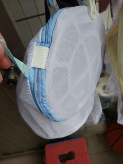 优兔 细网粗网套装洗衣袋 洗衣服内衣文胸的洗护袋 大号洗衣机专用网袋 洗衣袋护洗袋 中号40*50细网(衬衫) 晒单图