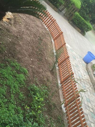 栏 防腐木栅栏