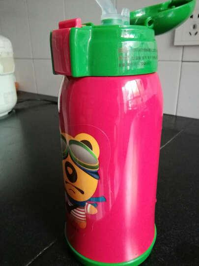 杯具熊儿童保温杯带吸管儿童水杯316不锈钢内胆宝宝学饮杯儿童保温壶 升级款-蓝色小蛇 晒单图
