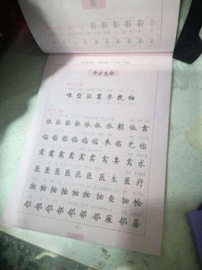 司马彦字帖·中性笔字帖:写字课课练·三年级下册(北师大版) 晒单图